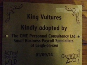CME Proud Sponsors of Vulture Valley at Colchester Zoo